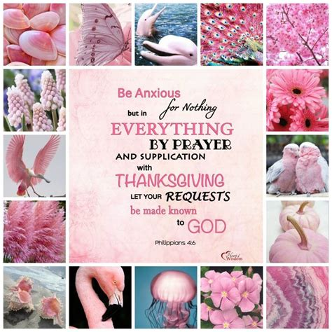 Twicecoaster 2 B Vers Pink Inspired Bible Verse Collages Pink