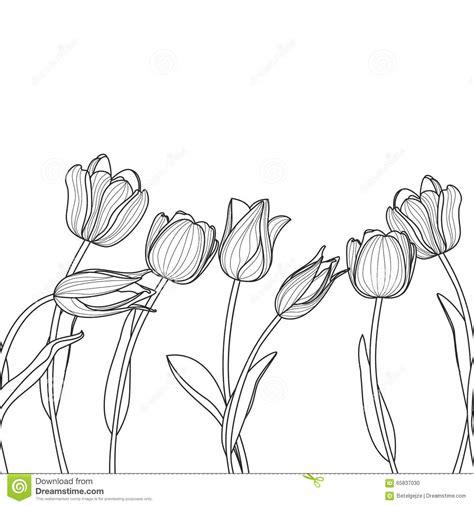 black and white elegant pattern vector floral seamless horizontal pattern black and white