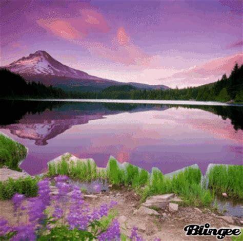 immagini paesaggi fioriti immagine prati fioriti 129235305 blingee