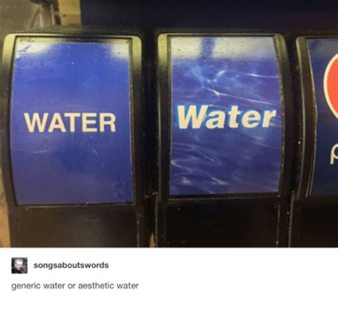 Aesthetic Meme - water water generic water or aesthetic water aesthetic