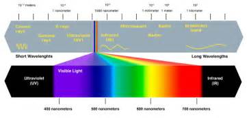 light color spectrum why are plants green