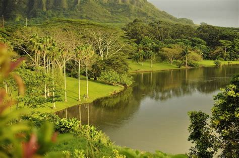 Hoomaluhia Botanical Gardens 1000 Images About Hawaii On Pinterest Black Sand Hawaii Volcano And Oahu Hawaii