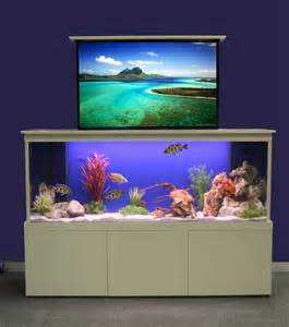 Geode Home Decor meet the aquarium tv kitchen sourcebook
