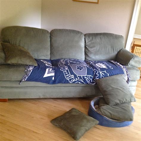 how to build a couch fort crafts for dogs build a couch fort i still want more