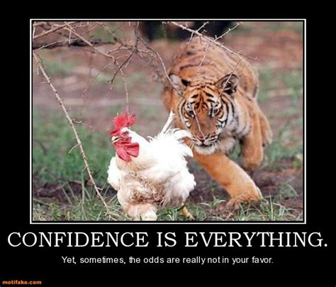 Chicken Meme - confidence is everything funny chicken meme picture for