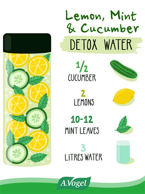 Memon Detox by Lemon Mint Cucumber Detox Water Recipe Cucumber