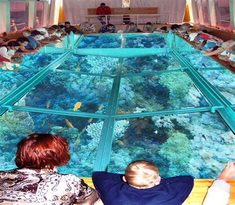 glass bottom boat sharm el sheikh - Glass Bottom Boat Tour