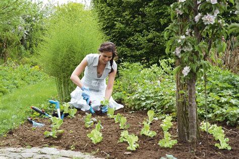 gardena unkraut j 228 ten ist unbeliebteste arbeit im garten - Garten Arbeiten