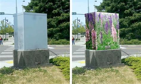 Landscape Ideas Around Utility Boxes 49 Best Images About Hiding Utility Boxes In Yard On