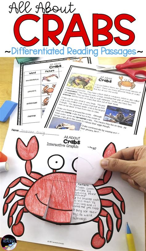 Kaos Activities Graphic 18 Oceanseven 151237 best tpt science lessons images on science classroom science lessons and