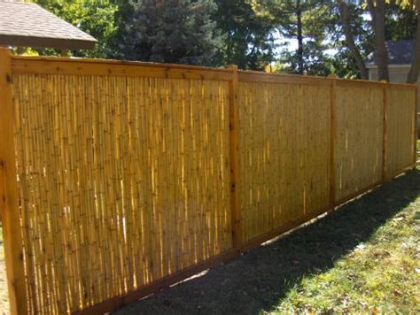 Bamboo Fence Roll Home Depot by Fence Amazing Home Depot Fence Ideas Fence Home Depot