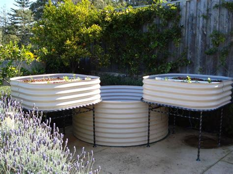 backyard aquaponics kit aquaponics suburban farmer