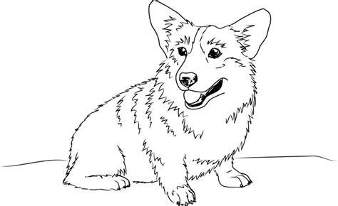 welsh corgi sketch by shango266 on deviantart