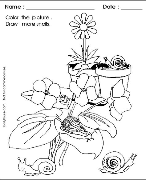 garden snail coloring page kiddyhouse com snail worksheets