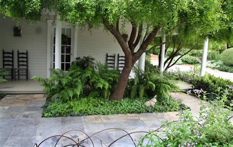 Fern Planter At Front Traditional Landscape Santa Fern Garden Ideas