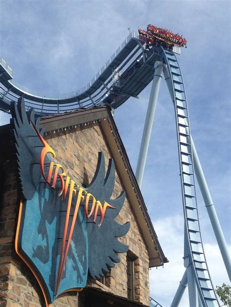 Busch Gardens Griffon by Pin Griffon Roller Coaster Flickr Photo Picture On