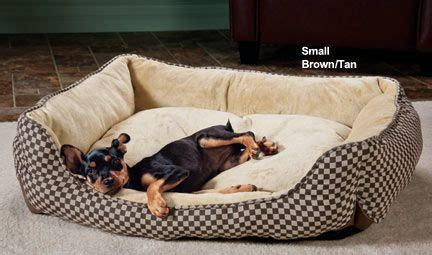 self warming dog bed 1000 images about self warming dog bed on pinterest