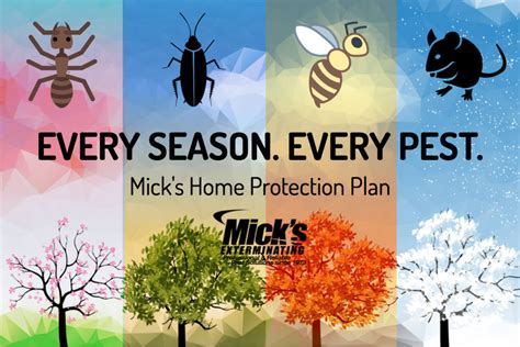 annual home protection plan home protection plan pests mick s home protection plan offers year long pest