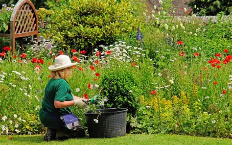 win a 163 1 000 gardening voucher from b q