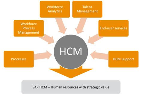 Top Mba Hcm by Sap Human Capital Management Cbs Corporate Business