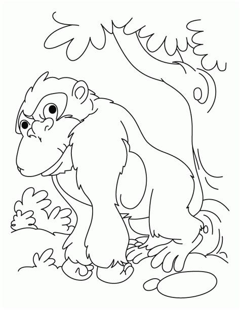 cute jaguar coloring pages jaguar pictures to color kids coloring