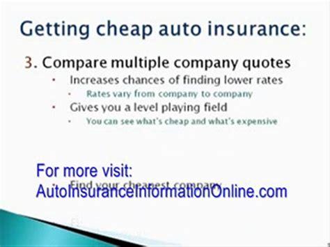 Low Car Insurance Quotes by Labradores De La Salmantina Cachorros De Labrador