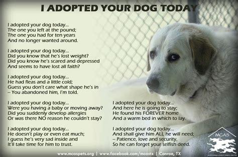 puppy poems pet adoption poem doggies