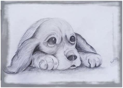 imagenes tiernas en lapiz imagenes de perritos en dibujos archivos imagenes de