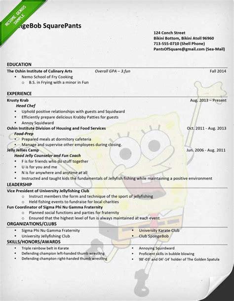 fictional resume resume ideas
