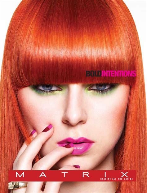 matrix hair color 1000 images about matrix on stylists silver