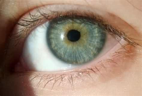 blue green eye color pin by á á â ä á ä é á á î á á on gateway to the soul