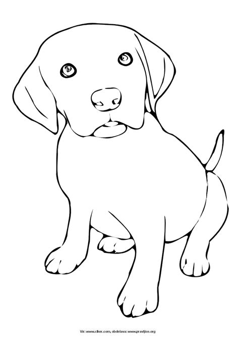 chibi dog coloring pages free chibi dog coloring pages