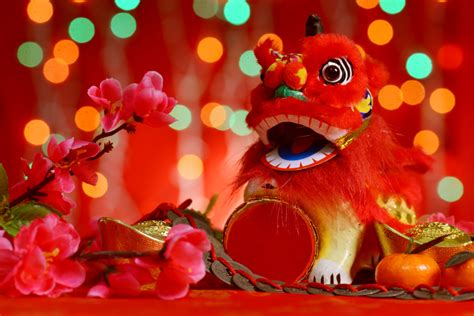 new year 2015 vacation china new year 2016 the year of the monkey petal talk