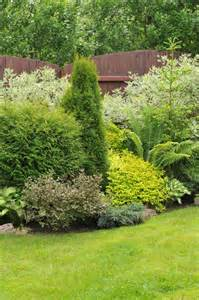 Garden Shrubs Ideas 17 Best Ideas About Privacy Plants On Bamboo Privacy Fence Privacy Trellis And