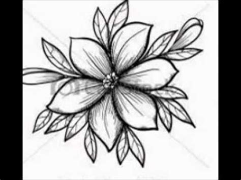 bloem tekenene getekende bloemen youtube