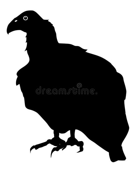 condor vector silhouette royalty free silhouette of condor stock vector illustration of wing