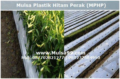 Harga Mulsa Merk Bell budidaya tanaman cabe pada plastik mulsa mulsa pertanian