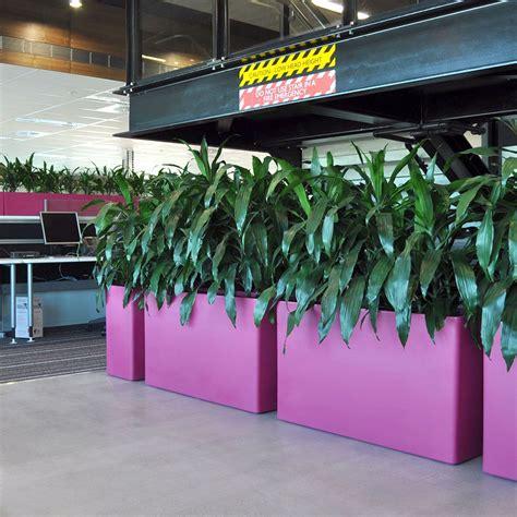 Lechuza Planters Australia by Planters Pot N Plant