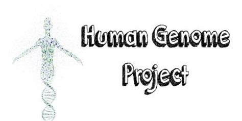 Essay About The Human Genome Project by Chemosynthesis Assignment Point