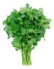 Parsley Detox Heavy Metals by Cilantro Chelation Therapy Heavy Metal Detox Eat This