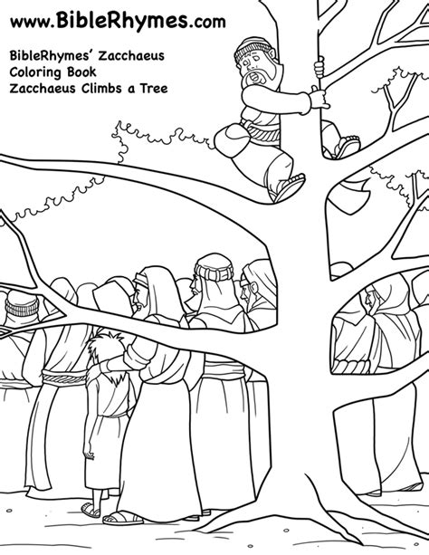 climbing a tree biblerhymes zacchaeus coloring book
