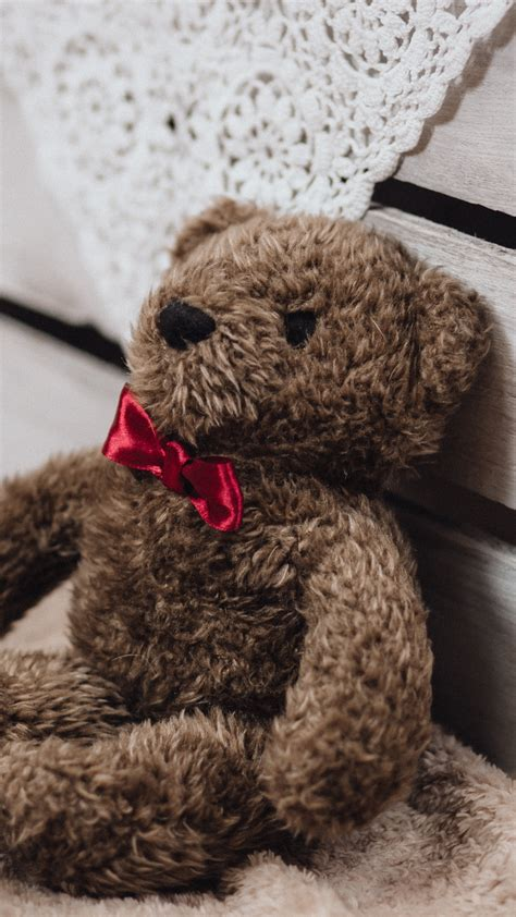 Teddy Wallpapers For Mobile