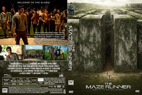 film maze runner dvd the maze runner movie dvd custom covers the maze