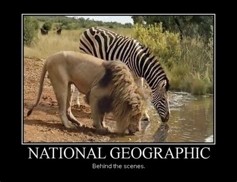National Geographic Also Search For National Geographic The Stuff