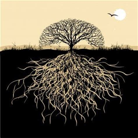 tree symbolism gallery funny game celtic tree of life meaning