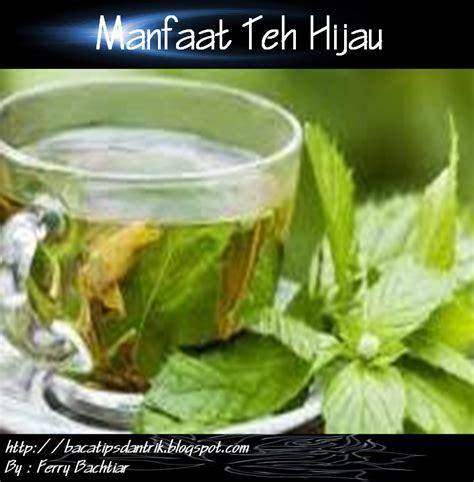 Teh Hijau Dan Teh Hitam manfaat teh hijau tips dan trik
