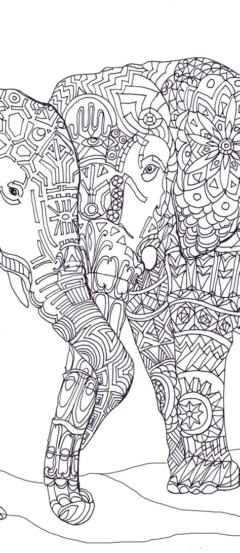 printable coloring pages for adults elephant elephant clip art coloring pages printable adult coloring