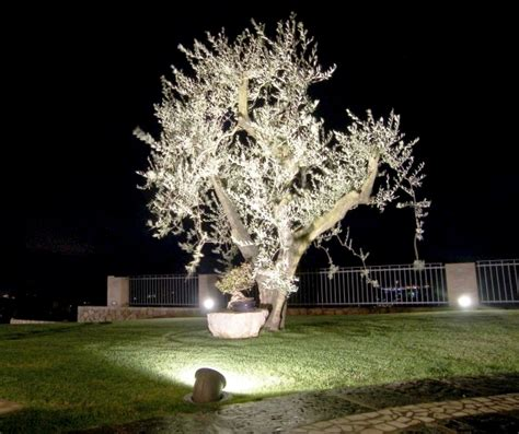 ghidini illuminazione ghidini porta la luce nel garden mondopratico it
