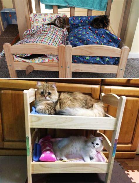 lit pour petit chien lit pour chien ikea