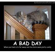 A Bad Day  Demotivational Poster
